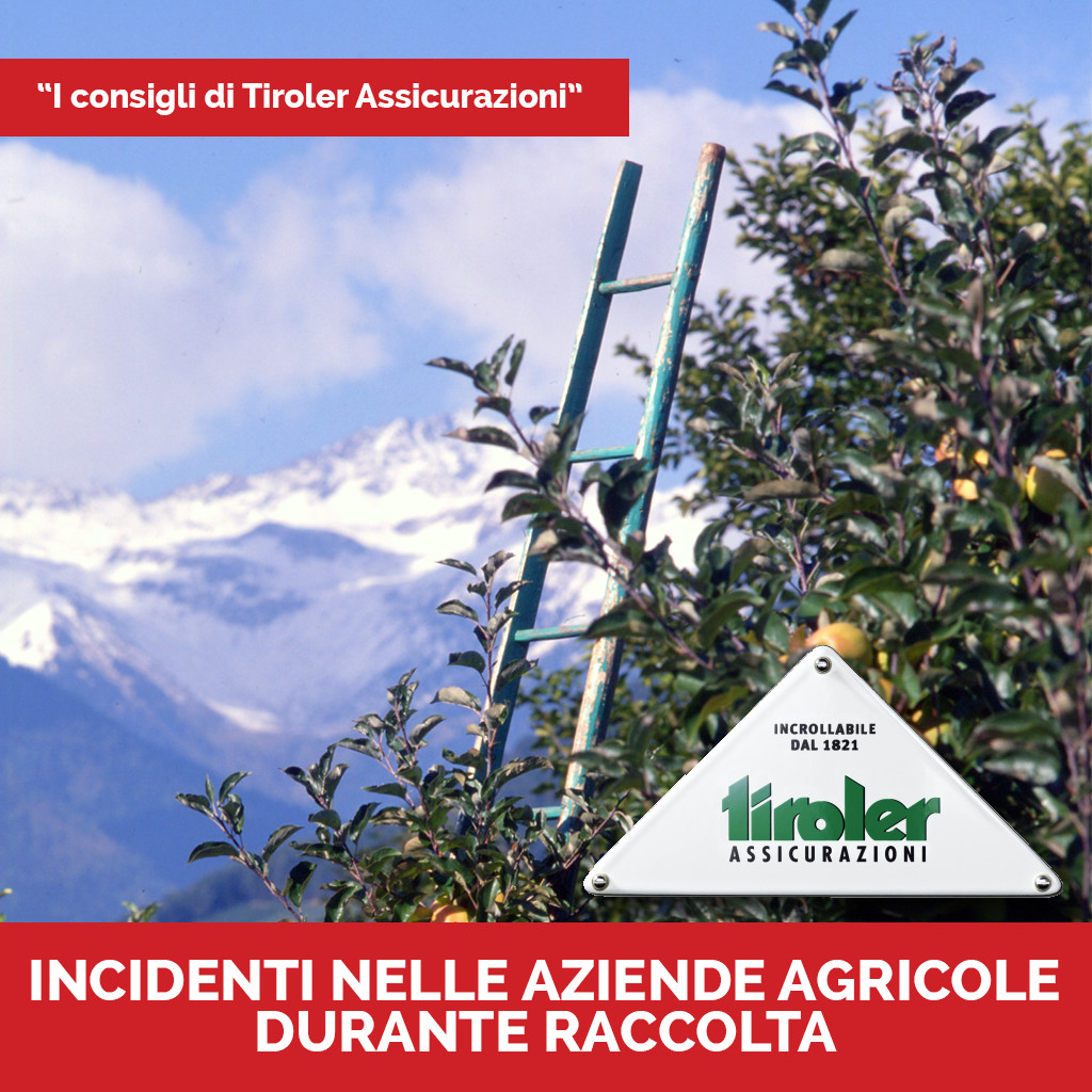 tiroler incidenti raccolta
