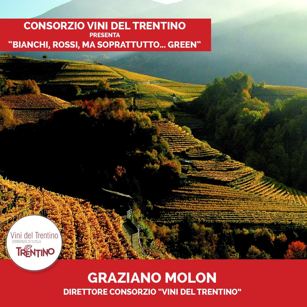 Podcast Vini del Trentino 1