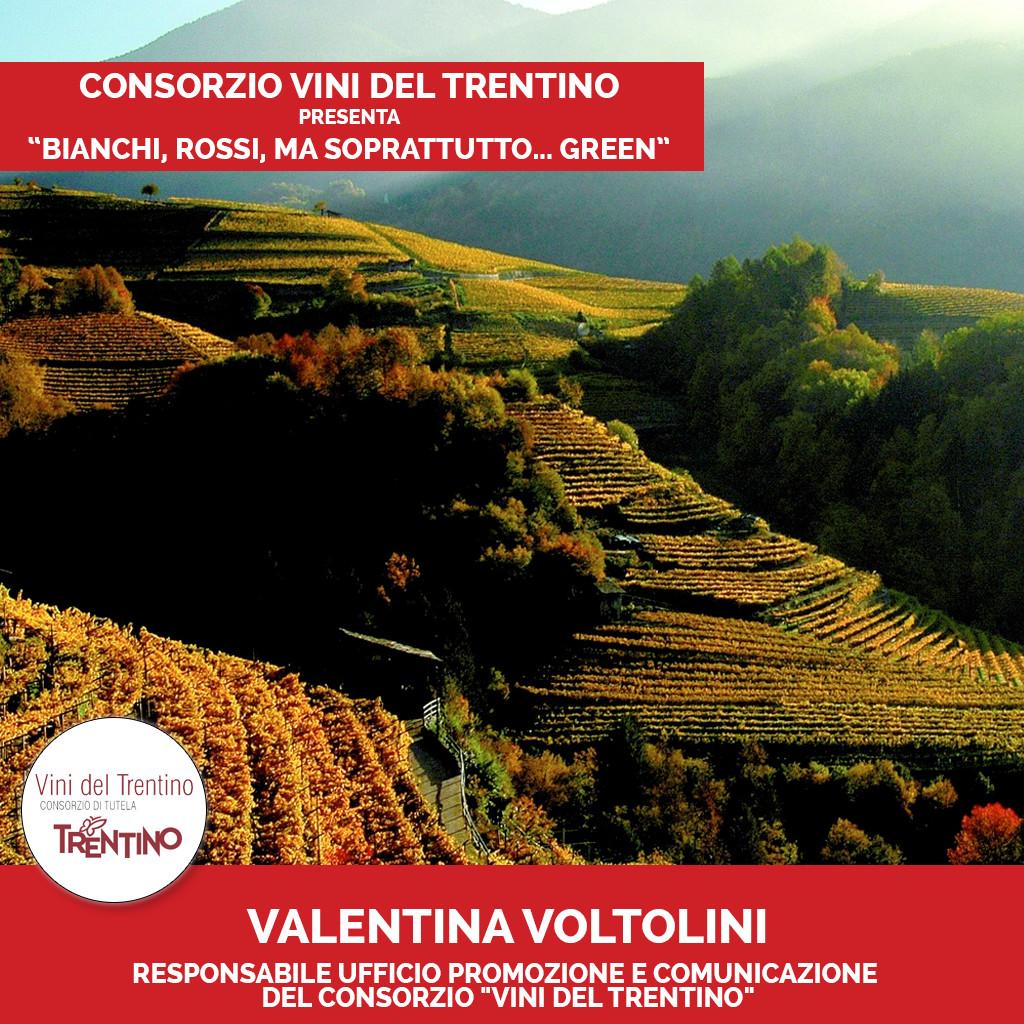 Podcast Vini del Trentino 3