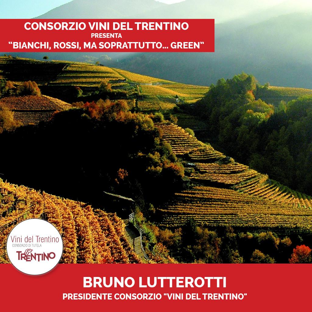 Podcast Vini del Trentino 4