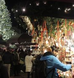 Inaugurazione Mercatino Natale Bolzano 5