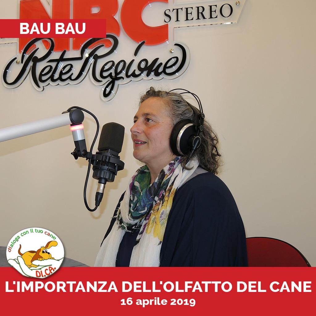Podcast Bau bau 16 aprile