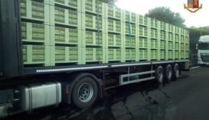 camion frutta avariata