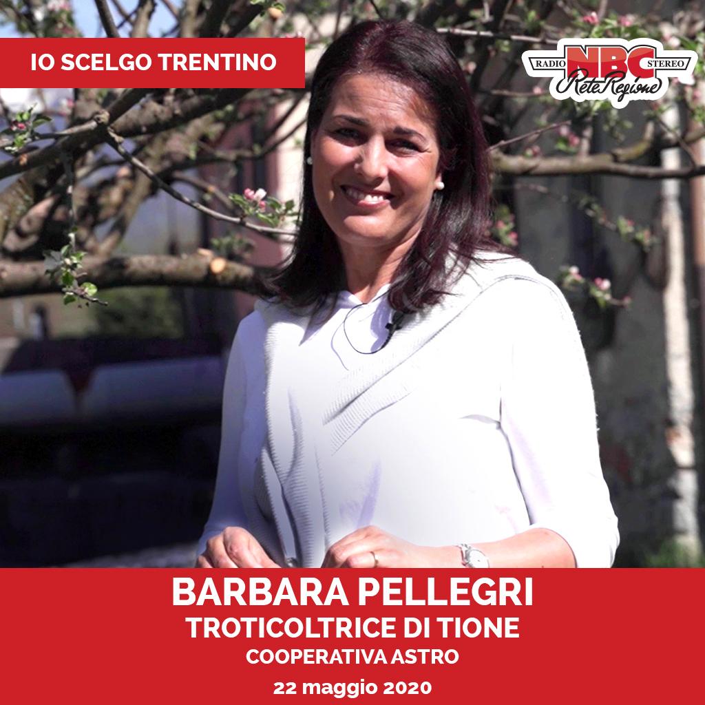20200522 Io Scelgo Trentino - 3