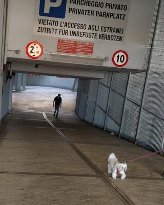 Garage Via Alto Adige 1